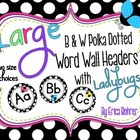 LARGE B & W Polka Dot with Ladybugs Word Wall Headers {Two