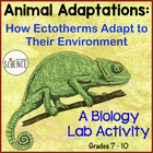 Lab: How Ectotherms Adapt to Their Environment