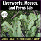 Lab:  Liverworts, Mosses, and Ferns