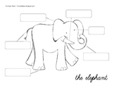 Label the Elephant