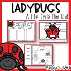 Ladybug Life Cycle {A Mini Unit}