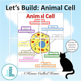 Let's Build: An Animal Cell