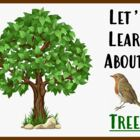 Let's Learn About Trees! (Powerpoint) For Elementary