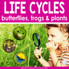 Life Cycles of Butterflies,Frogs & Plants (Activities, Pap