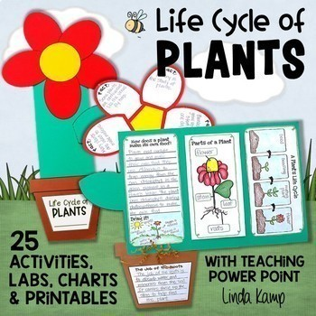 Life Cycle of Plants {20 Activities & Foldable Flower Project Book}