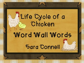 Life Cycle of a Chicken: Word Wall Words