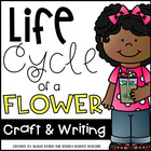 Life Cycle of a Flower Craftivity