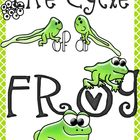 Life Cycle of a Frog Digital Clipart