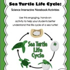 Life Cycle of a Sea Turtle - Science Interactive Notebook