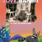 Love, Bandit ( A tail of foster care)