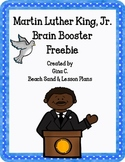 MLK Brain Booster Freebie