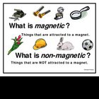 Magnetic and Nonmagentic poster