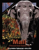 Mali - A Rescued Asian Elephant Tale