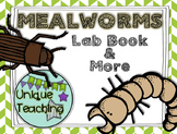 Mealworm Lab Notes