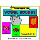 Medial Vowel Sounds Flip Booklets
