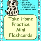 Mini Flashcards for Take Home Practice