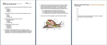 Mollusks and Annelids Quiz 2