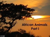 Africa - Animals : Animals in Africa 1 - Powerpoint using