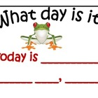 Morning Math Calendar Board Printables Frog themed 18 pages