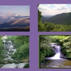 Mountain Habitat of Georgia Plants and Animals PowerPoint