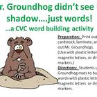 Mr. Groundhog sees words not shadows....A CVC Word Buildin