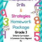 Multiplication -  Practice and Strategy Posters