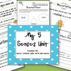 My 5 Senses {Classroom & Take-Home Labs}