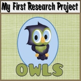 My First Research Project: Owls