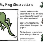 My Frog Observation Journal