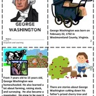 My George Washington Book