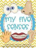 My five senses mini unit