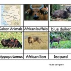 Nomenclature Cards - Animals - Africa - Gabon