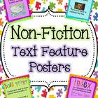 Non-Fiction Text Features Colorful Posters