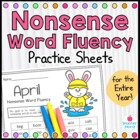 Nonsense Word Fluency Practice Work Sample {RTI Progress M