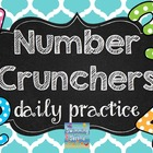 Number Crunchers daily practice (Grade 2)
