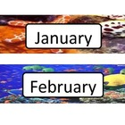 Oceans Alive Calendar Flashcards - Design 2