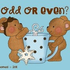Odd and Even Cocoa Bears