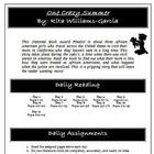 One Crazy Summer Literature Circle Activity, Vocabulary, Projects