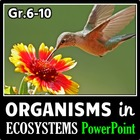Organisms in Ecosystems - PowerPoint