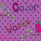 Owl Color Words for Promethean Board