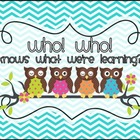 Owl Themed Daily Schedule Cards - Who! Who!...knows what w