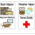 Owl Themed Job Picture Cards- , PreK, Kindergarten, First Grade