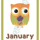 Owl Themed Monthly Birthday Labels
