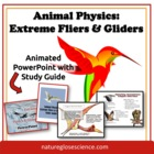 POWERPOINT & ACTIVITY GUIDE BUNDLE: Extreme Flying & Glidi