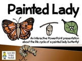 Painted Lady Butterflies ~ An Interactive Presentation of
