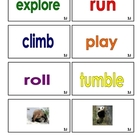Panda Bear Word Cards