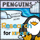 Penguin Research for Kinder