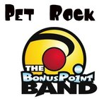 """Pet Rock"" (MP3 - song)"