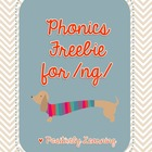 Phonics Freebie for /ng/