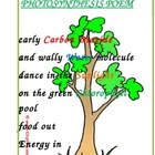 Photosynthesis Poem